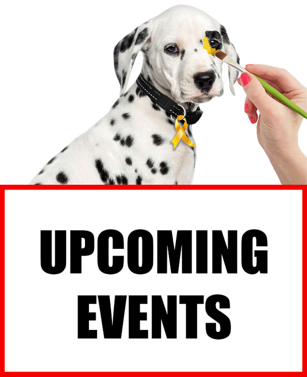 Spot Laundromats Upcoming Events