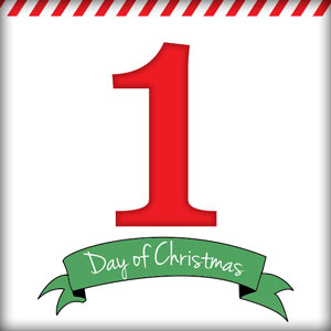 1st Day of Christmas Contest