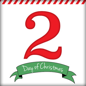 2nd Day of Christmas Contest