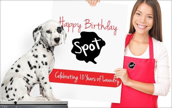 celebrating 10 years of Spot laundromats.